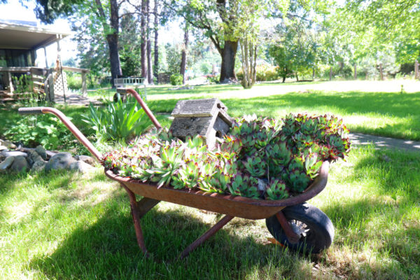 General Wheel Barrel